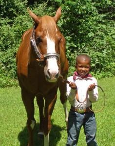 AV with horse